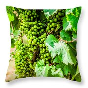 Wine Grapes Throw Pillow