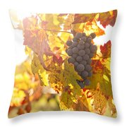 Wine Grapes In The Sun Throw Pillow