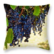 Wine Grapes Throw Pillow by Kristina Deane