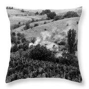 Wine Yard Throw Pillow