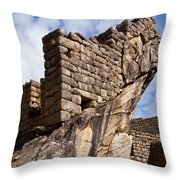 Wing Of The Condor One Throw Pillow