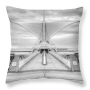 Wing Span Throw Pillow