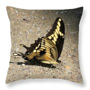 Winged Delight Throw Pillow