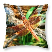 Winged Wonder Throw Pillow