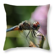 Wings Forward Throw Pillow