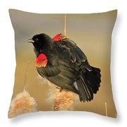 Wings In A Golden Light 2 Throw Pillow
