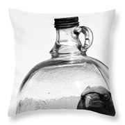 Wings Kept From Flying  Throw Pillow