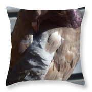 wings of a Dove Throw Pillow