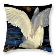 Wings Of A White Duck Throw Pillow