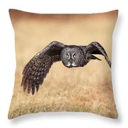 Wings Of Motion Throw Pillow