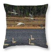 Wings Over Water 2 Throw Pillow