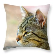 Winston 7 Throw Pillow