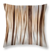 Winter Abstract Throw Pillow by Bill Wakeley