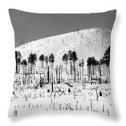 Winter After Fire-san Francisco Peaks Throw Pillow