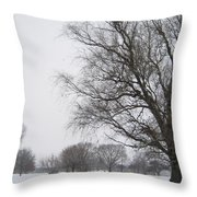 Winter Afternoon 4  2013 Throw Pillow