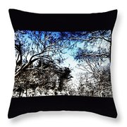 Winter Along The Bronx River Throw Pillow
