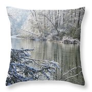 Winter Along Williams River Throw Pillow by Thomas R Fletcher