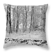 Winter And The Wall Throw Pillow