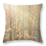 Winter Arbor Light Throw Pillow