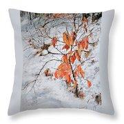 Winter Ash Throw Pillow