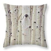 Winter Aspen Tree Forest Portrait Throw Pillow