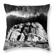 Winter At Joshua Tree Throw Pillow