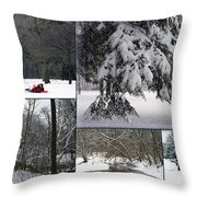 Winter At Petrifying Springs Park Throw Pillow