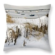 Winter At The Beach 2 Throw Pillow