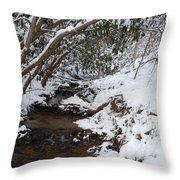 Winter At The Creek Throw Pillow