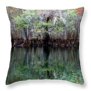 Winter At The Springs 1 Throw Pillow