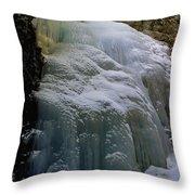 Winter At Zapata Falls Throw Pillow