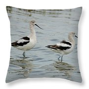 Winter Avocets Throw Pillow
