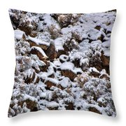 Winter Bald Eagle Throw Pillow