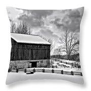 Winter Barn Monochrome Throw Pillow