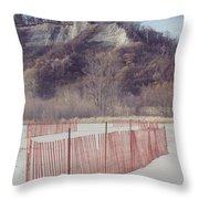 Winter Beach Throw Pillow