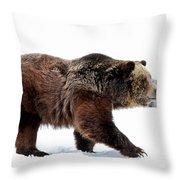 Winter Bear Walk Throw Pillow