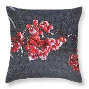 Winter Berries II Throw Pillow