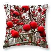 Winter Berryscape Throw Pillow