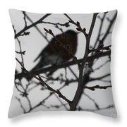 Winter Bird Throw Pillow