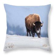 Winter Bison Throw Pillow