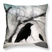 Winter Blackbirds Throw Pillow
