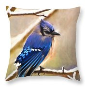 Winter Blue  Throw Pillow