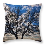 Winter Blue Skys Throw Pillow