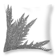 Winter Branches By Jammer Throw Pillow
