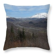 Winter Brown And White Throw Pillow