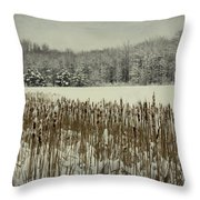 Winter By The Pond Throw Pillow