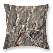 Winter Cattail Abstract Throw Pillow
