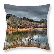 Winter Cattails By The Lake Throw Pillow