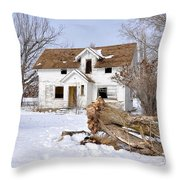 Winter Cleanup Throw Pillow