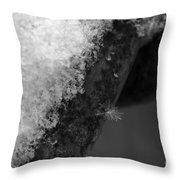 Winter Coat Black And White Throw Pillow